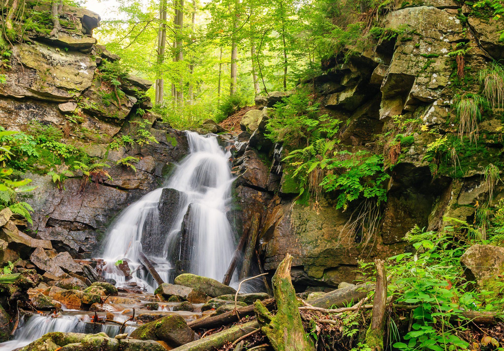 Zielony wodospad